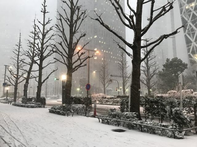 Temperaturas de Shinjuku tokio en Japon nieve